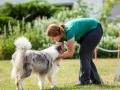 Hundemaedchen_Agility_Training_PSSV_Marburg_Ebsdorfergrund (44)