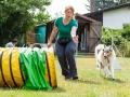 Hundemaedchen_Agility_Training_PSSV_Marburg_Ebsdorfergrund (80)