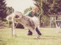 Hundemaedchen_Agility_Training_PSSV_Marburg_Ebsdorfergrund (81)