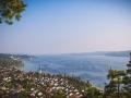 Bodensee_Urlaub_Landschaft_Hunde_See_Insel Mainau_Blumeninsel_Blumen_Wasser (51).jpg