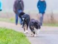 Hundefreunde_Marburg_Gassi_Spaziergang_Gassidate (5)