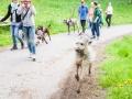 Hundefreunde_Marburg_Gassi_Treffen_Hund_Hunde_Freunde_Coelbe_Spaziergang (1).jpg