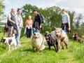 Hundefreunde_Marburg_Gassi_Treffen_Hund_Hunde_Freunde_Coelbe_Spaziergang (39).jpg