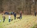 Hundewanderung_Wanderung_Hund_Marburg_Kirchhain_Spaziergang_Gassitreffen_Treffen_Hundetreffen_Hundeschule_Lahntal (12)