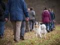 Hundewanderung_Wanderung_Hund_Marburg_Kirchhain_Spaziergang_Gassitreffen_Treffen_Hundetreffen_Hundeschule_Lahntal (66)