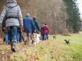 Hundewanderung_Wanderung_Hund_Marburg_Kirchhain_Spaziergang_Gassitreffen_Treffen_Hundetreffen_Hundeschule_Lahntal (70)