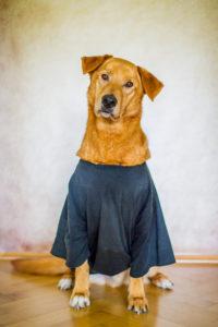 Aiko und die T-Shirt Lösung