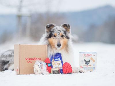 Wir haben getestet… | Viva Dogs Überraschungsbox
