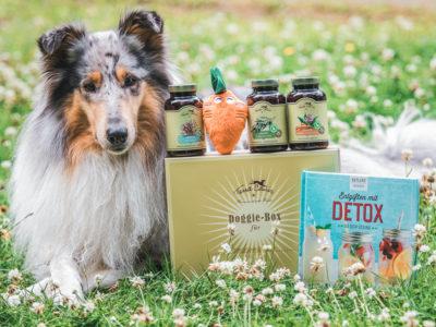 Getestet | Doggie Box von Terra Canis